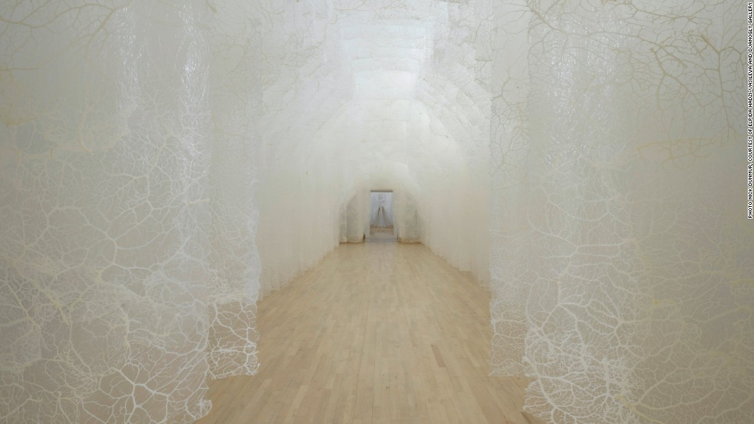 Seen here in Djanogly Gallery, Hadzi-Vasileva has employed the architecture to route light through an animal membrane (in this instance, pigs' caul fat), juxtaposing experience and materiality.