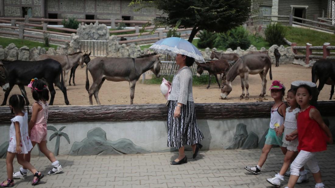 A North Korean woman walks past by a Pyongyang Zoo donkey pen.