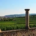 Roman-villa-in-Weilberg-1