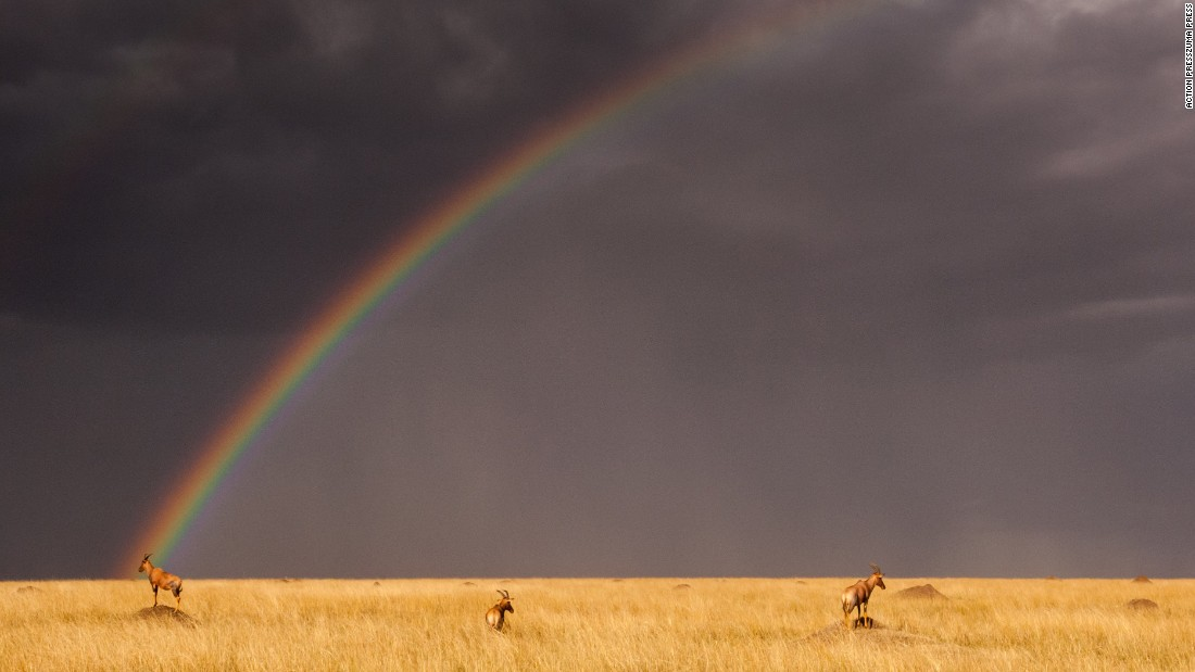 """A rainbow is seen at the Masai Mara National Reserve in Kenya on Wednesday, August 24. <a href=""""http://www.cnn.com/2016/08/19/world/gallery/week-in-photos-0818/index.html"""">See last week in 31 photos</a>"""