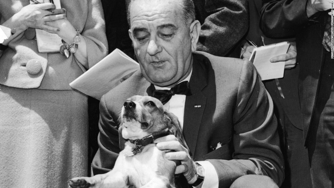 President Lyndon B. Johnson kneels and pets his beagle, Him, on the White House lawn in 1964. Johnson's other beagle was named Her.