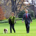 White House dogs 16