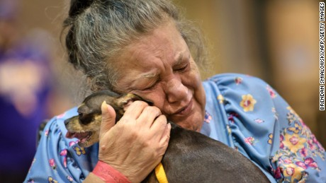 Sandra Montanaro holds her dog Dixy during one of two 20-minute daily visits at a temporary animal shelter the Lamar Dixon Expo Center near a flood victims shelter after flooding August 16, 2016 in Gonzales, Louisiana. / AFP / Brendan Smialowski        (Photo credit should read BRENDAN SMIALOWSKI/AFP/Getty Images)