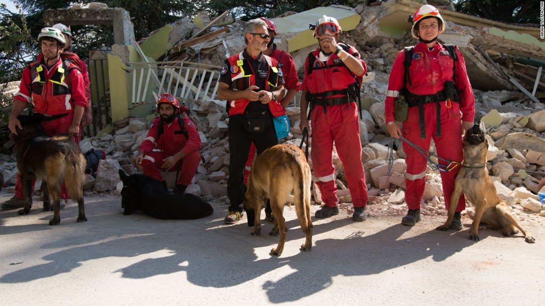 A K-9 rescue crew regroups outside of the red zone in Amatrice.
