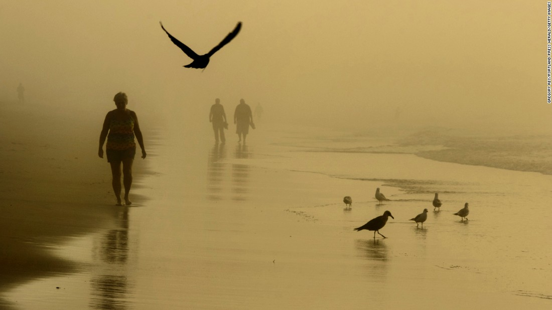 People and birds walk in Old Orchard Beach, Maine, during an early morning fog on Tuesday, July 26.