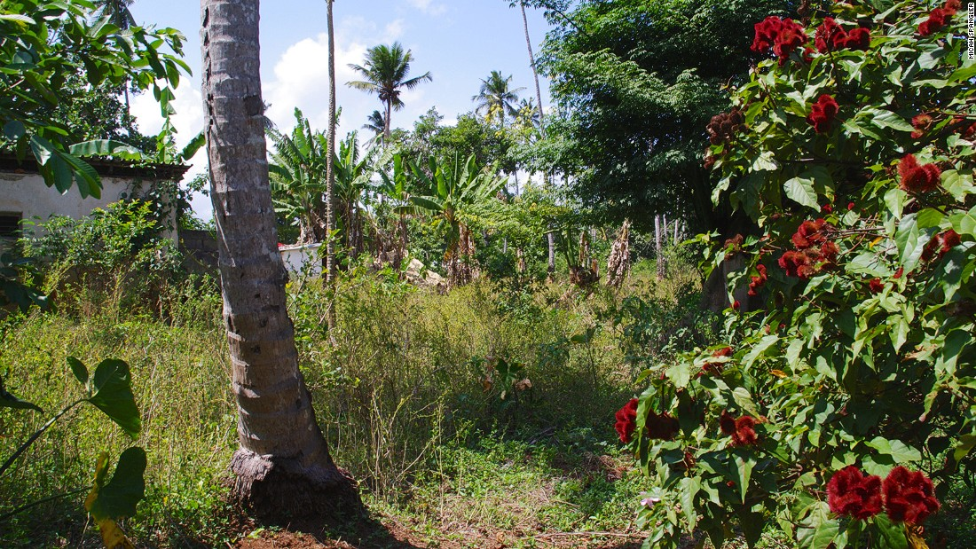 """Hakuna Matata Spice Farm, named for the Swahili phrase meaning """"no worries,"""" made famous by Disney's """"The Lion King,"""" is in Dole village, northeast of Zanzibar City."""
