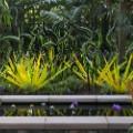 02 botanic garden art shows