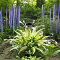 04 botanic garden art shows