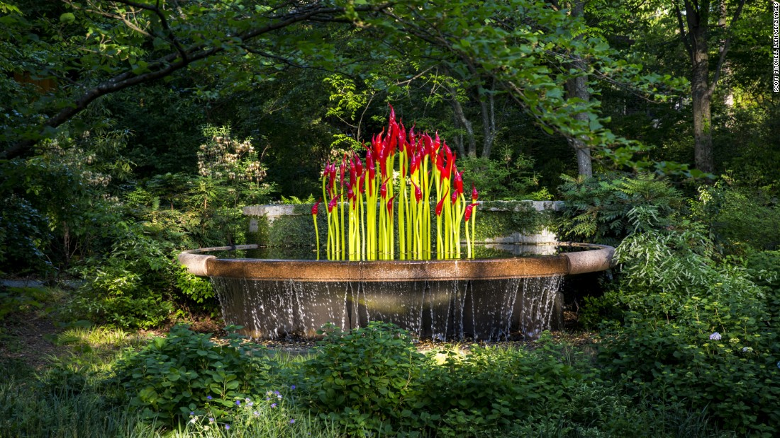 """The colorful """"Fern Dell Paintbrushes"""" emerge from a lush water source."""