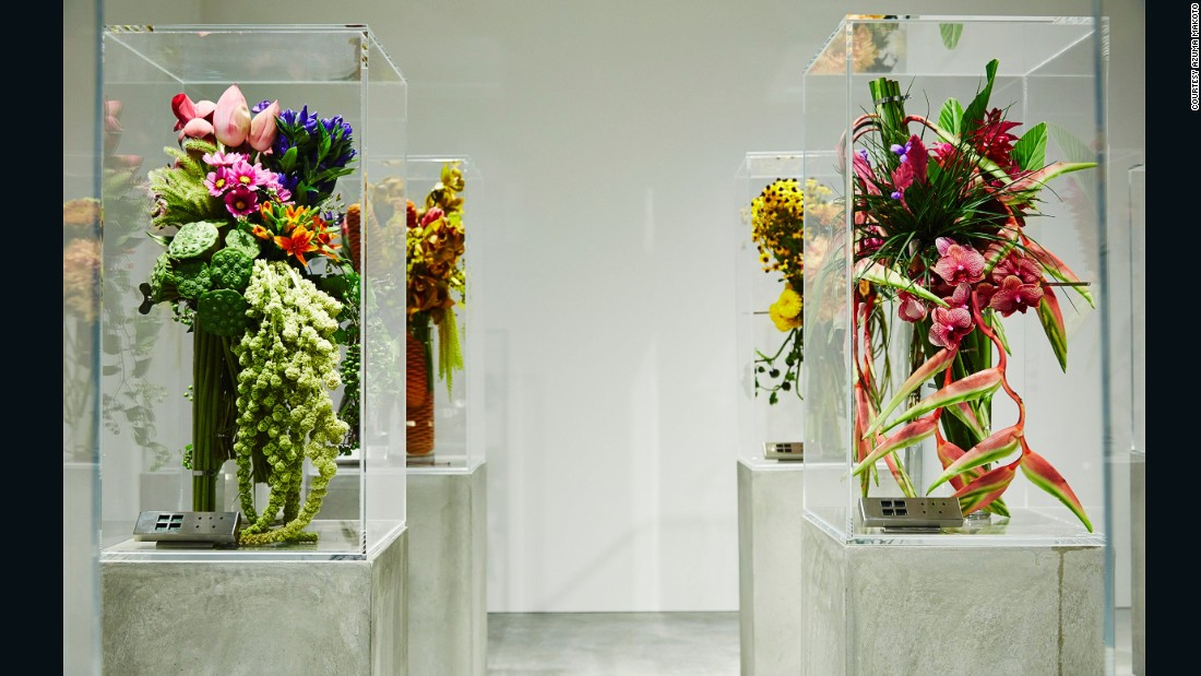 """Azuma has an underground florist shop in Tokyo, called """"Jardin des Fleurs"""", that he says is """"like a wine cellar."""" The temperature, light and humidity are all carefully controlled to ensure the flowers are shown at their best."""