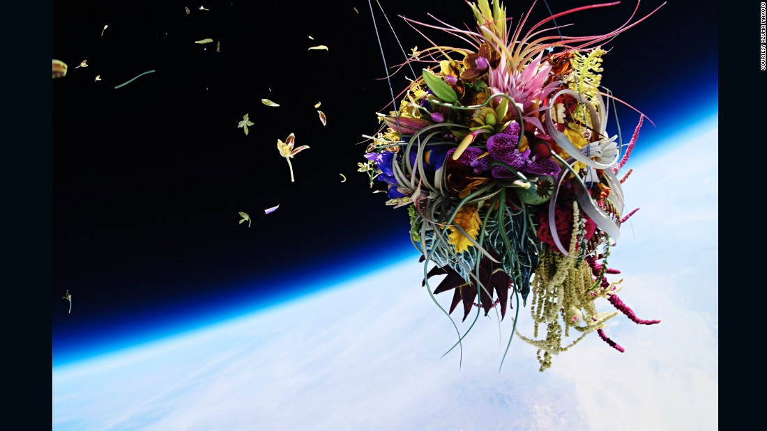 """In Exobiotanica, Azuma sent a pine bonsai and a mother's day bouquet into space and photographed them suspended against the earth. """"Making just an art object was not a goal at all,"""" says Azuma. """"I thought I could make more beautiful flower art in the world of minus 60 degree Celsius."""""""