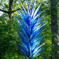 17 botanic garden art shows