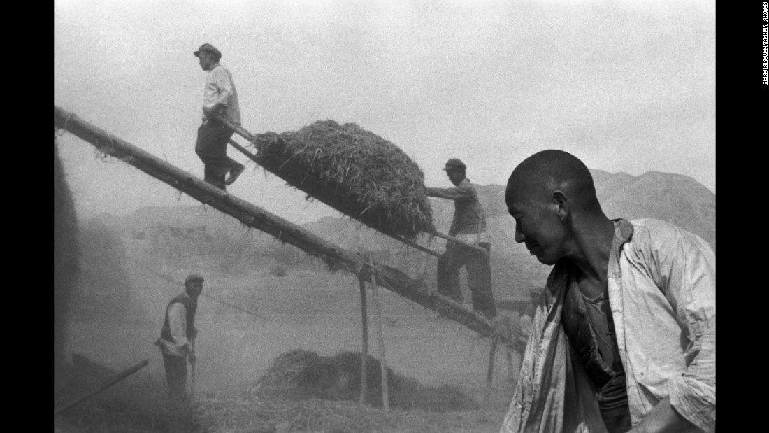 Men harvest wheat in China's Gansu province in 1957.