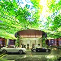 Dubai Rosemont hotel Jungle_CopyrightPlompmozes-(1)