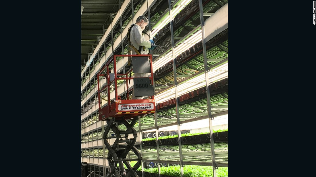 AeroFarms hopes to transform how food is produced with an approach to farming which involves gathering vast amounts of data to create algorithms to help them optimize the growing method for each variety.