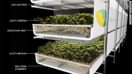 Images from inside Aerofarms, a vertical farming company based in Newark.