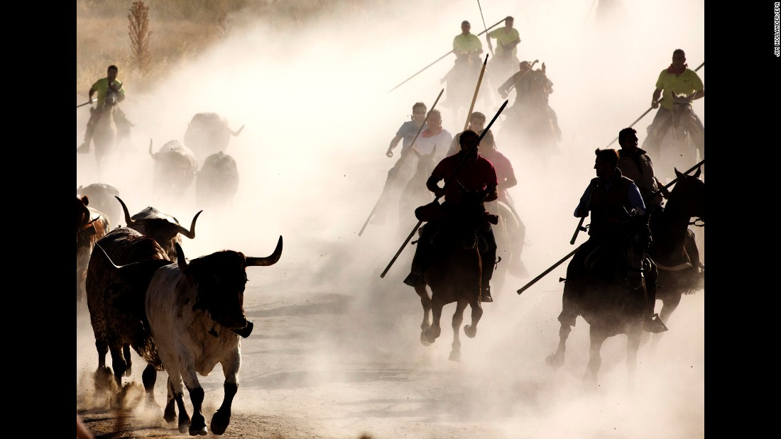 Men ride horses during a bull run in Castile and Leon, Spain, on Monday, August 29. The bull run is part of the annual Fiesta de Cuellar.