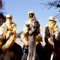 tuareg 6