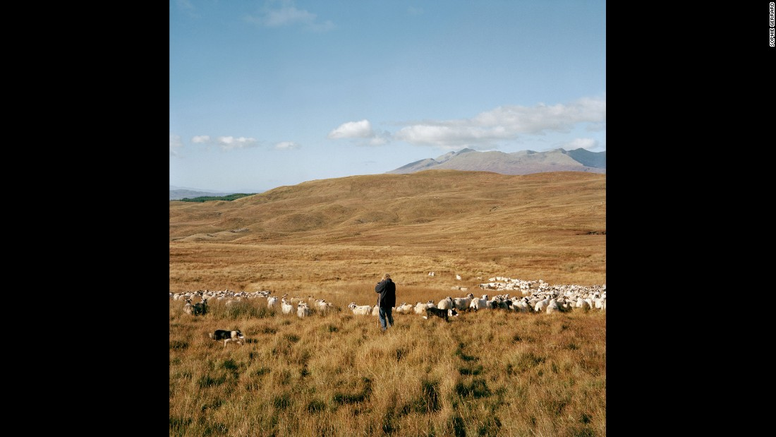 """MacPherson with her animals in Dalmally. """"There are three mountains on this farm, and they go up over 3,000 feet,"""" she told Gerrard. """"The sheep go up into those hills and we won't see them until the summer."""""""