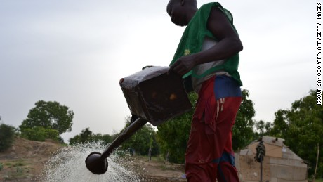 A market gardener waters salad greens near N'Djamena, Chad. Critics have attacked the government for the sponsorship of FC Metz at a time the country is experiencing widespread water insecurity.