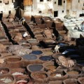 fez tanneries