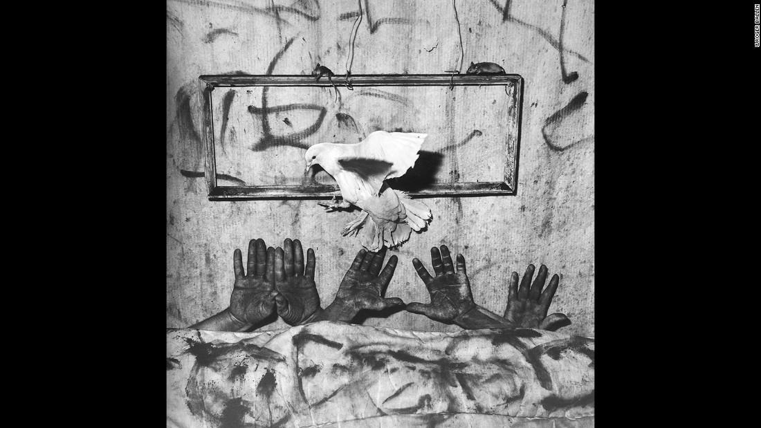 Asylum of the Birds by Roger Ballen