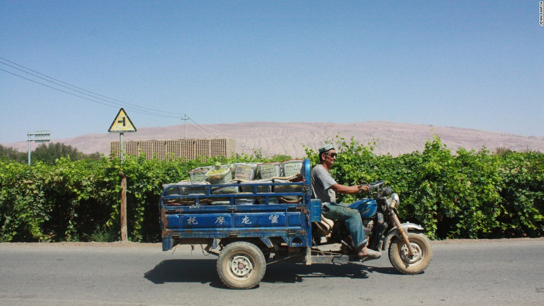 A man transports the region's prized seedless grapes.