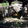 collapse roof forest hills