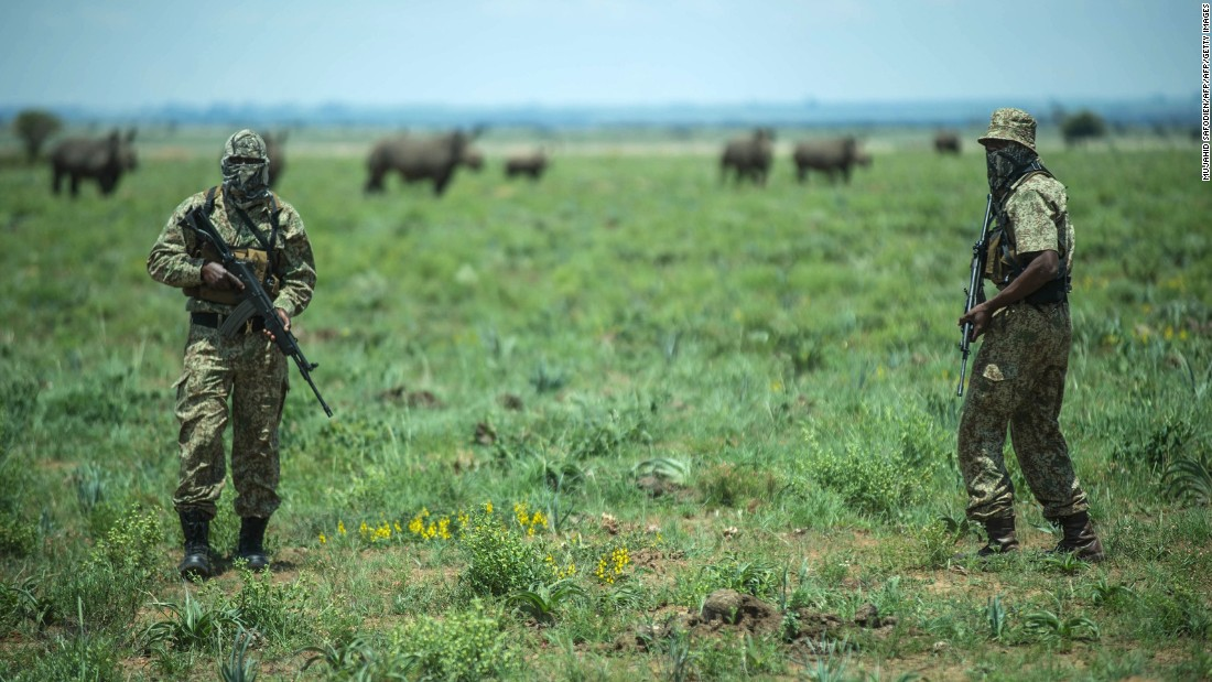 Hume employs an anti-poaching patrol on his 8,000 hectare ranch to protect his 1,405 rhinos. Starting the ranch in 1992, the millionaire owner has dehorned all of his rhinos. Hume advocates for legalizing the trade of rhino horns and a non-lethal approach to attaining them.