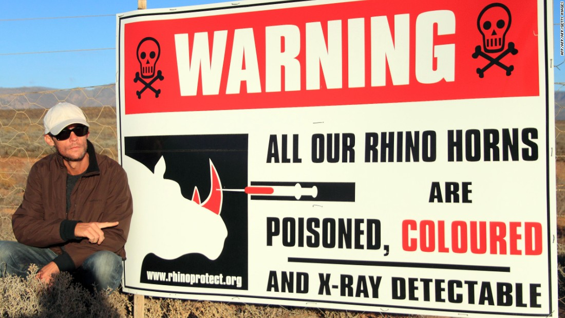 "Other ranchers in South Africa have used alternative deterrents. French Damien Vergnaud, pictured here in 2013, <a href=""http://www.timeslive.co.za/local/2011/12/23/rhino-horns-poisoned-to-put-off-poachers"" target=""_blank"">hires armed security to protect the rhinos on his private ranch</a>. He also injects the horns with multiple substances: dye, the same as that used in cash-in-transit cases; a substance which renders horns visible on x-ray scanners; and barium, which when ingested causes illness. <br />"