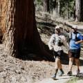 11 angles crest ultra marathon