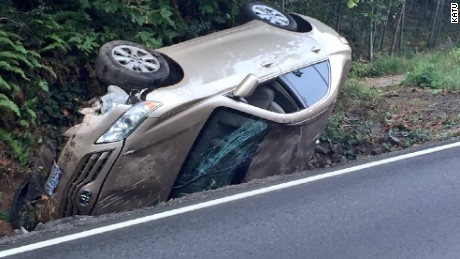 The driver wasn't seriously injured after a spider caused her to lose control and wreck her car in Portland