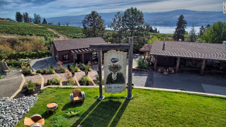 Quirky Charm in Canadian Wine Country
