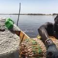 Africa travel salt