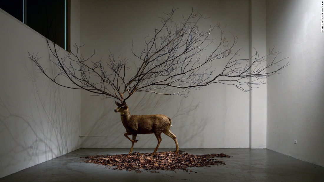 """Expanding on the theme of the natural, Korean artist <a href=""""http://www.myeongbeomkim.com/en/"""" target=""""_blank"""">Myeongbeom Kim</a> typically works with trees and other plant life (and, in this case, a taxidermy deer). Kim has had solo shows in South Korea, China, France, Puerto Rico and the US."""