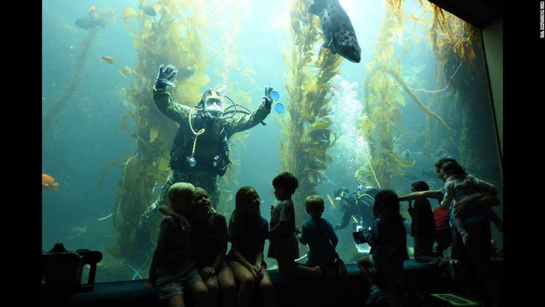 """U.S. Navy Lt. Cmdr. Mike Dalrymple, an explosive ordnance disposal diver, interacts with the public during a dive at the Birch Aquarium in La Jolla, California, on Sunday, September 11. It was part of the annual Fleet Week celebrations in San Diego. <a href=""""http://www.cnn.com/2016/09/01/politics/gallery/us-military-august-photos/index.html"""" target=""""_blank"""">See U.S. military photos from August</a>"""