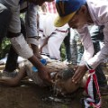 05 Ethiopia stampede 10_03