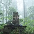 Kumano Kodo trail 2