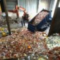waste food korea