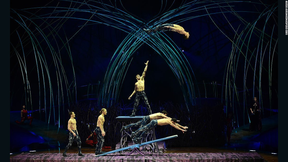 In Amaluna, artists spring off the Teeterboard, executing quintuple twisting somersaults. Acrobats then do the same thing with double and single metal stilts attached to their legs, 30 feet above the stage.
