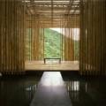 Great (Bambool) Wall 3
