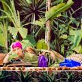 jardin majorelle ysl 1