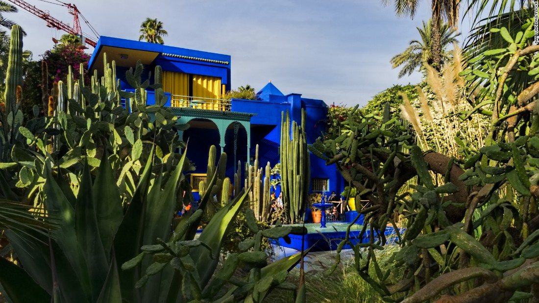 Morocco majorelle garden check out morocco majorelle for Jardin yves saint laurent