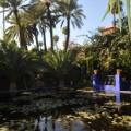 jardin majorelle ysl 9