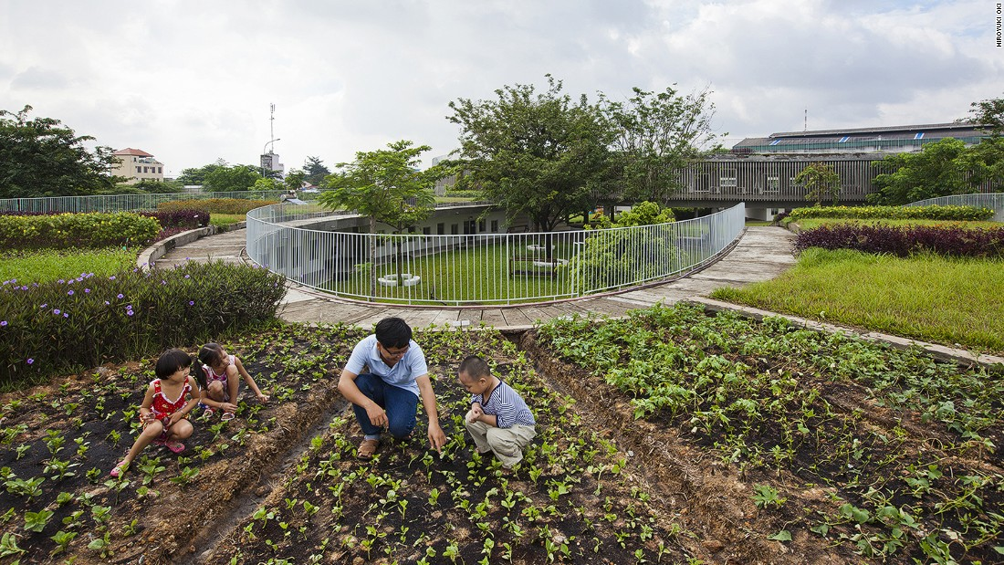 An experimental vegetable garden on the roof educates children about nature.