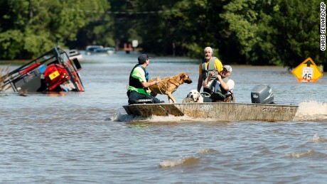 South Edgecombe Fire and Rescue workers rescue several dogs that were trapped in homes flooded by rising water from Hurricane Matthew in Pinetops, N.C., on Sunday, Oct. 9, 2016.