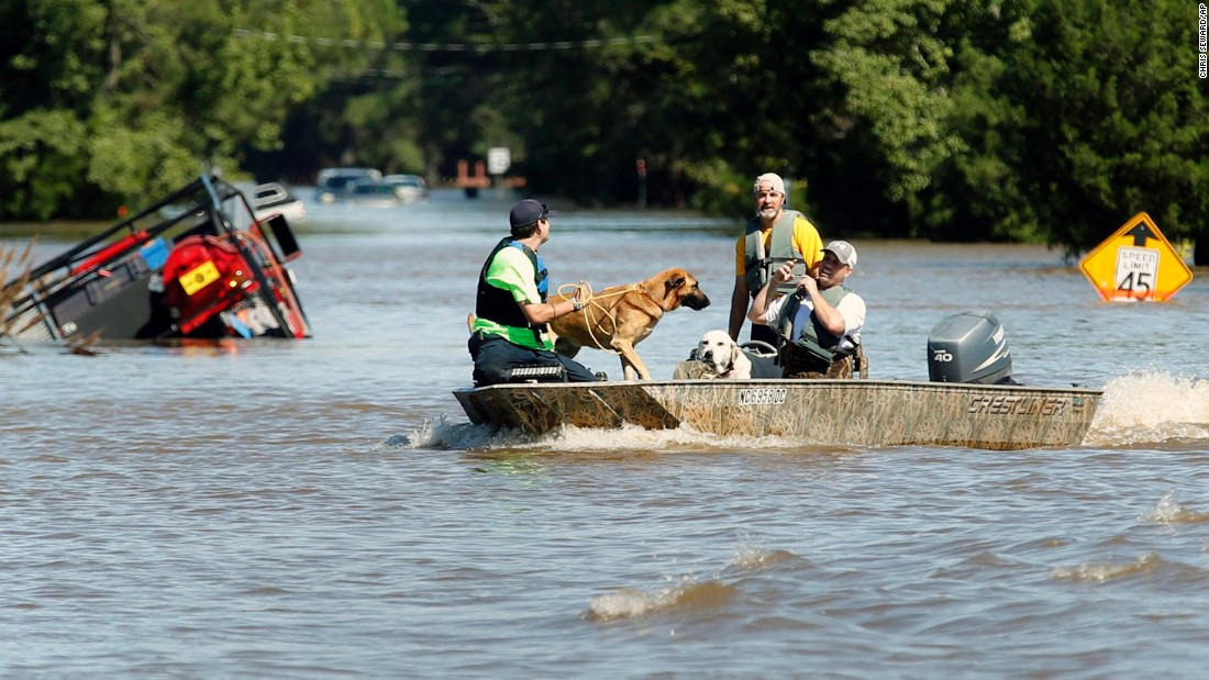 Rescue workers help several dogs that were trapped in homes in Pinetops, North Carolina, on October 9.
