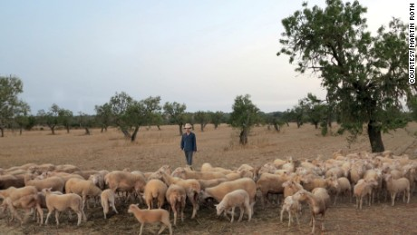 In 2012 artist Martin Roth went to live in the European countryside among sheep.