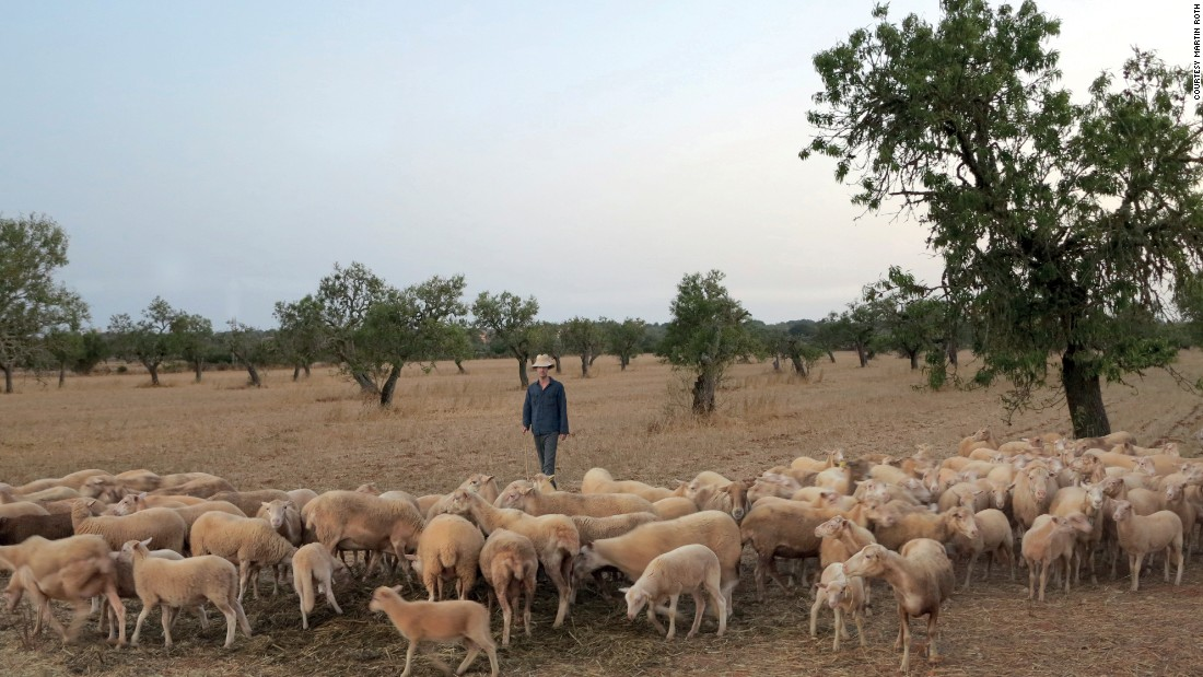 """In 2012, Roth went to live in the European countryside among sheep. The artist's retreat functioned as a """"rupture of our 24/7, always-on, always-connected, high performance culture."""""""