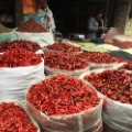 sichuan peppers parts unknown